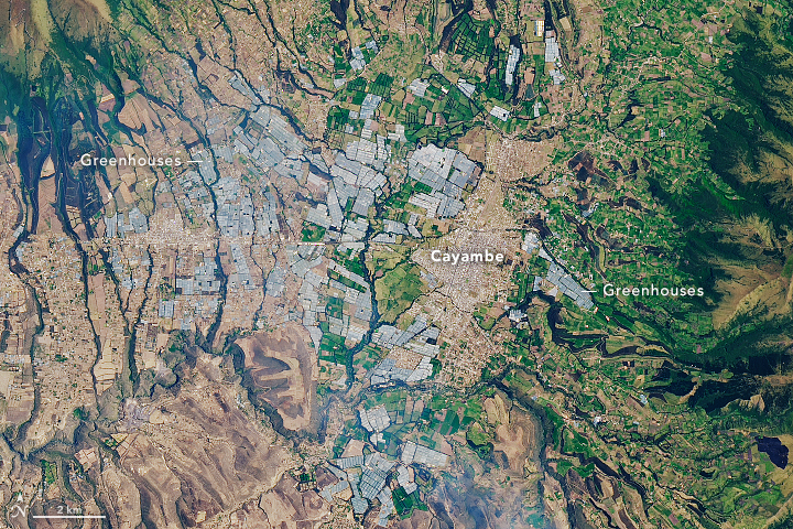 Greenhouses of Cayambe Valley  - related image preview