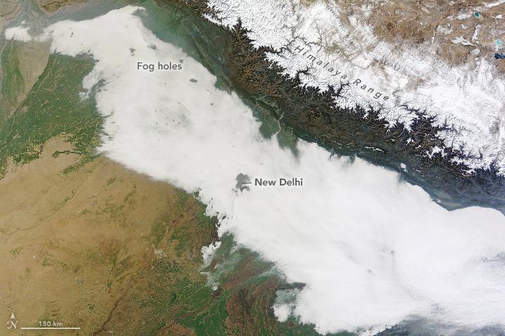 Urban Heat Islands Punch Holes in Fog