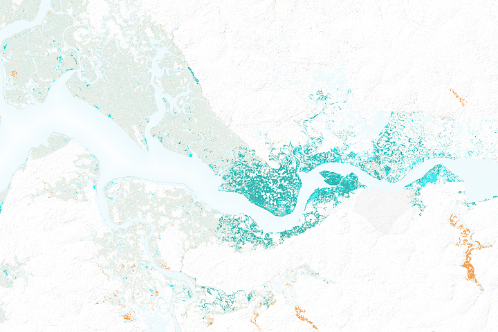 The Spread of Mangroves in Senegal  - selected image