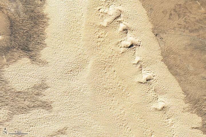 Samalayuca Sand Dunes