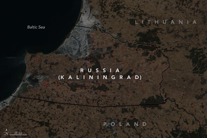 Spring Fires in Kaliningrad