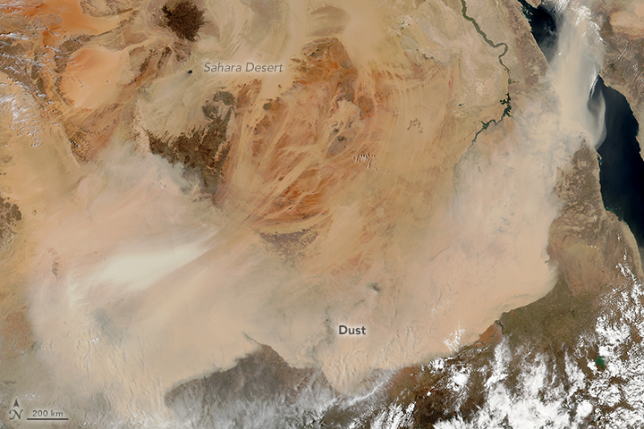Vast Dust Storms in the Sahara