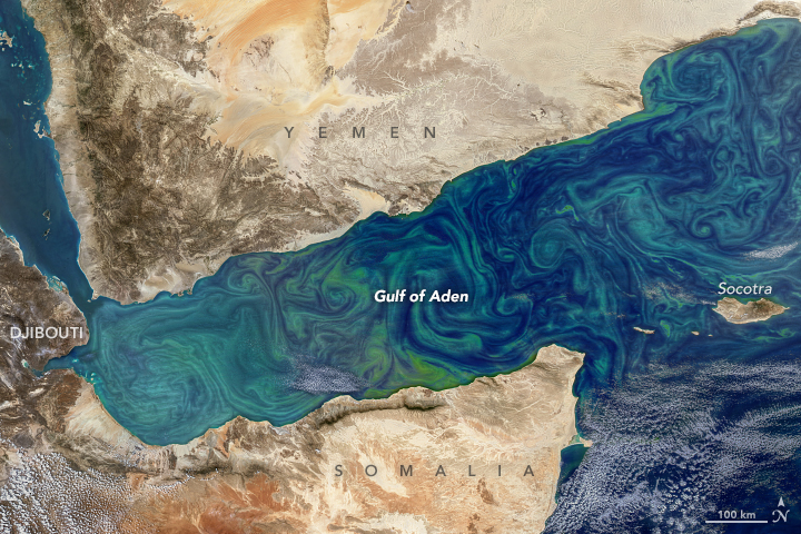 Bloom in the Gulf of Aden