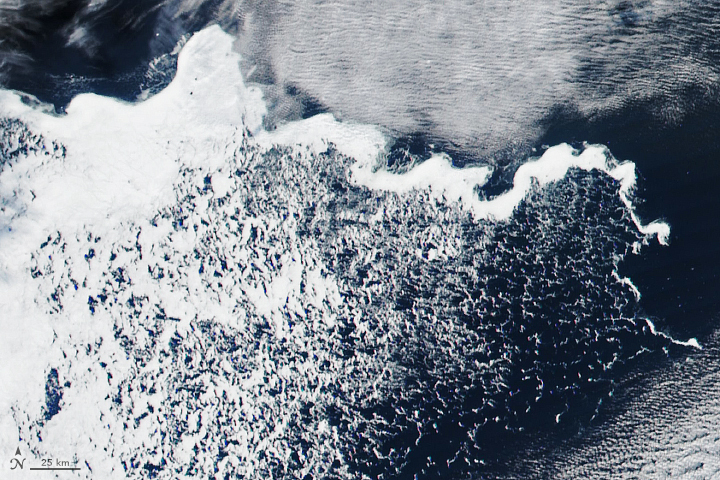 Tendril of Ice in the Weddell Sea