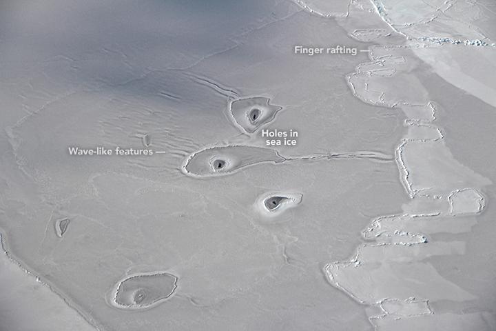 Curious Circles in Arctic Sea Ice