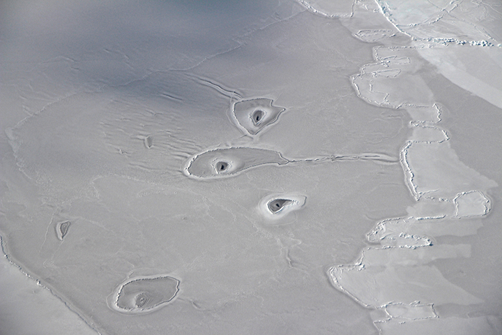 Curious Circles in Arctic Sea Ice