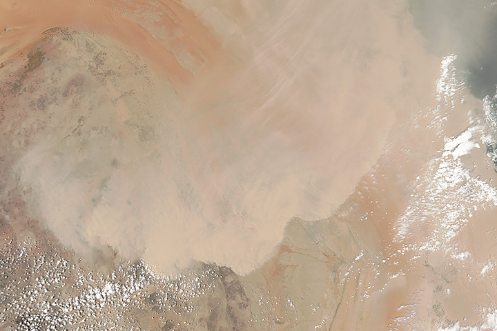 Dust Storm in Saudi Arabia