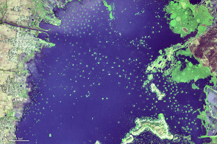 The Floating Islands of India