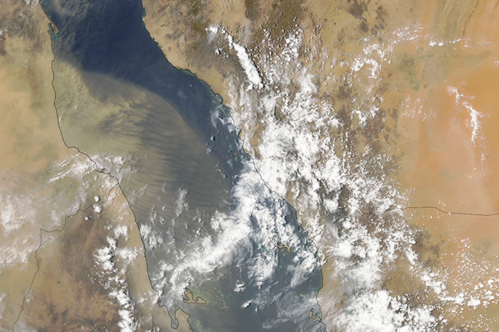 Waves of Dust Over the Red Sea