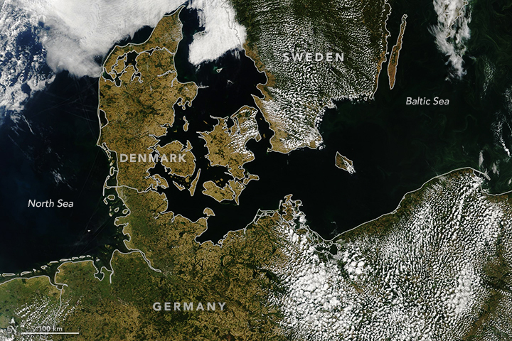 Heatwave Turns Europe Brown