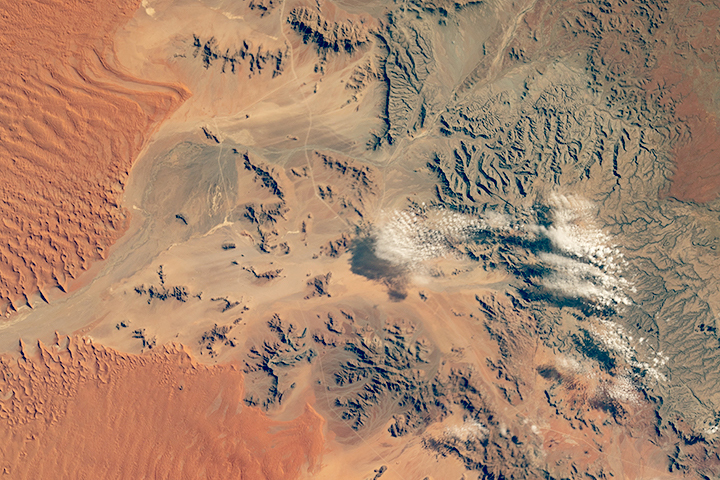 Sand Sea Margin, Namib Desert