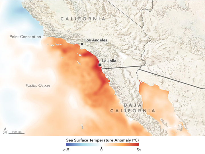 Record Warm Waters off Southern California