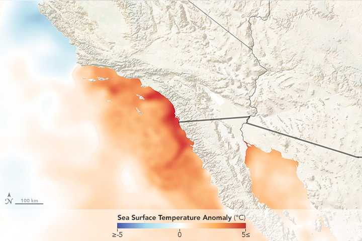 Record Warm Waters off Southern California - related image preview