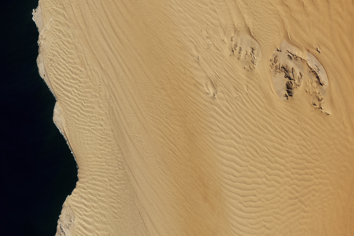 Between the Ripples of the Namib Sand Sea