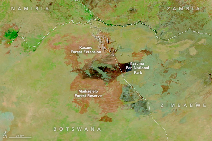 Fires Scar Northern Botswana - related image preview
