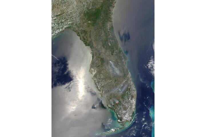 Wildfires in Florida - selected image