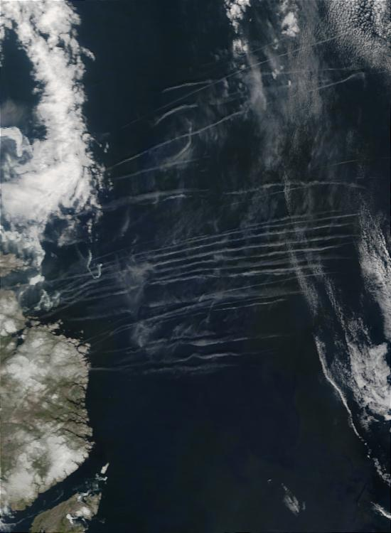 Contrails off the coast of Newfoundland - related image preview