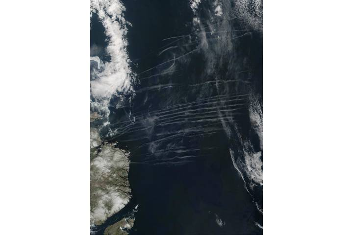 Contrails off the coast of Newfoundland - selected image