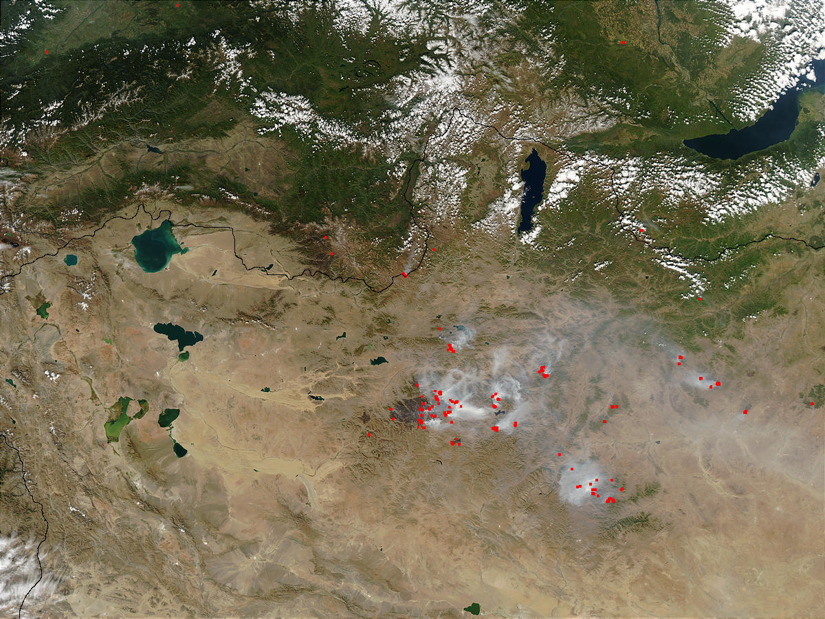 Fires in Mongolia - related image preview