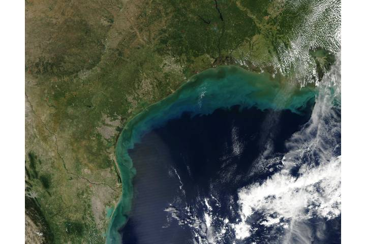 Sediments in Gulf of Mexico - selected image